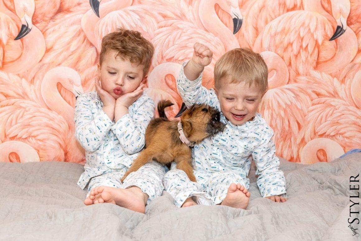 jak wychować dziecko z psem