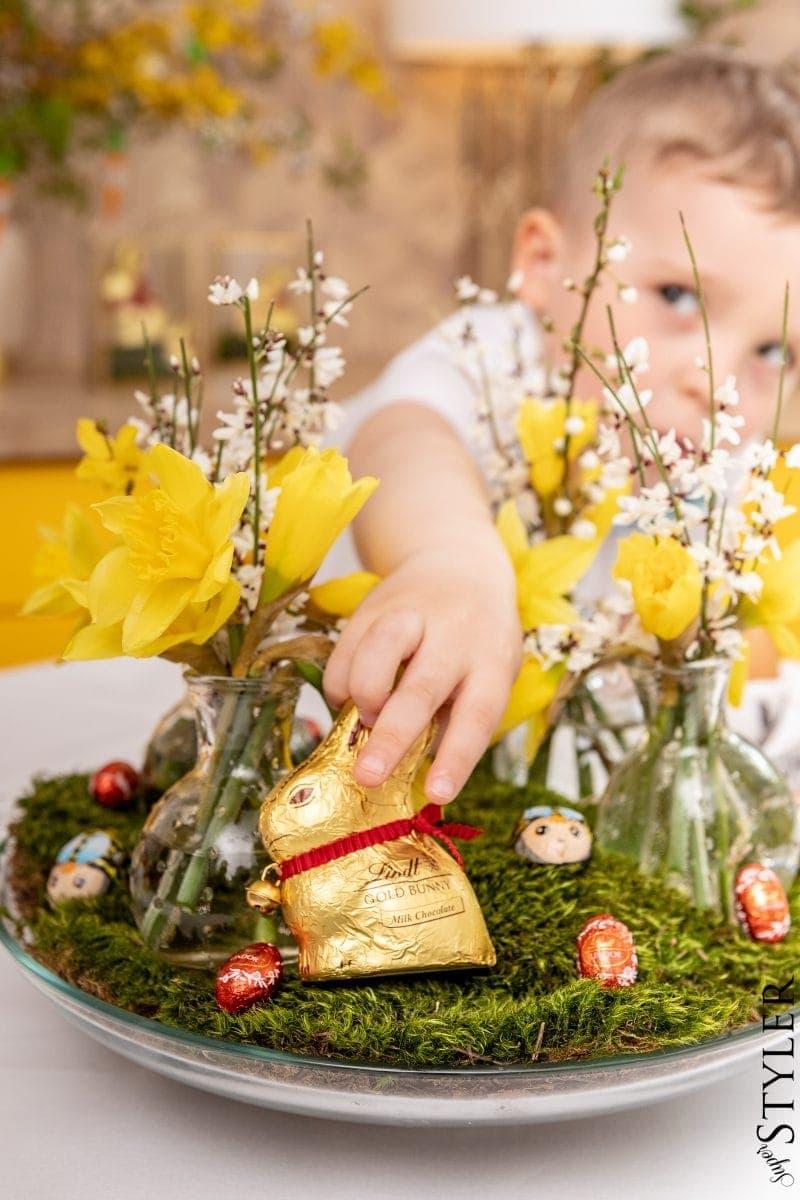 szukanie zająca Wielkanoc