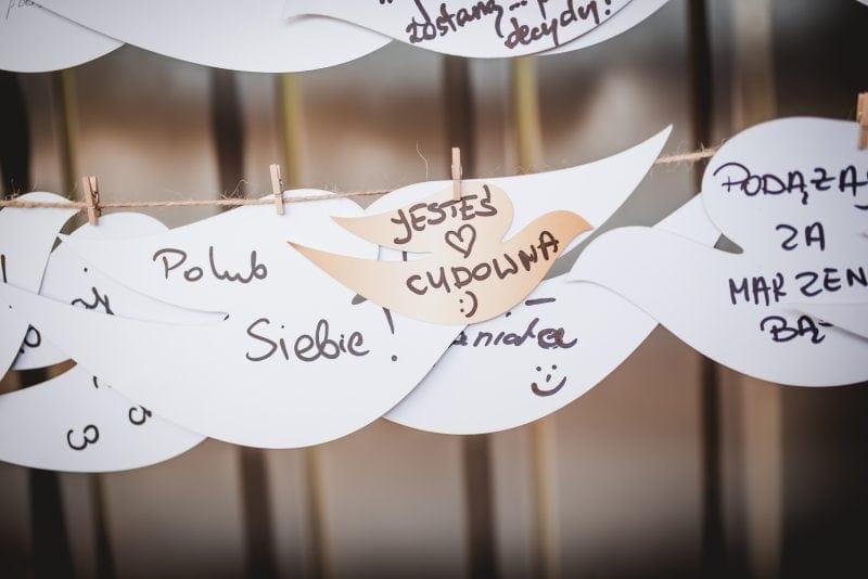 papierowe gołębie Dove