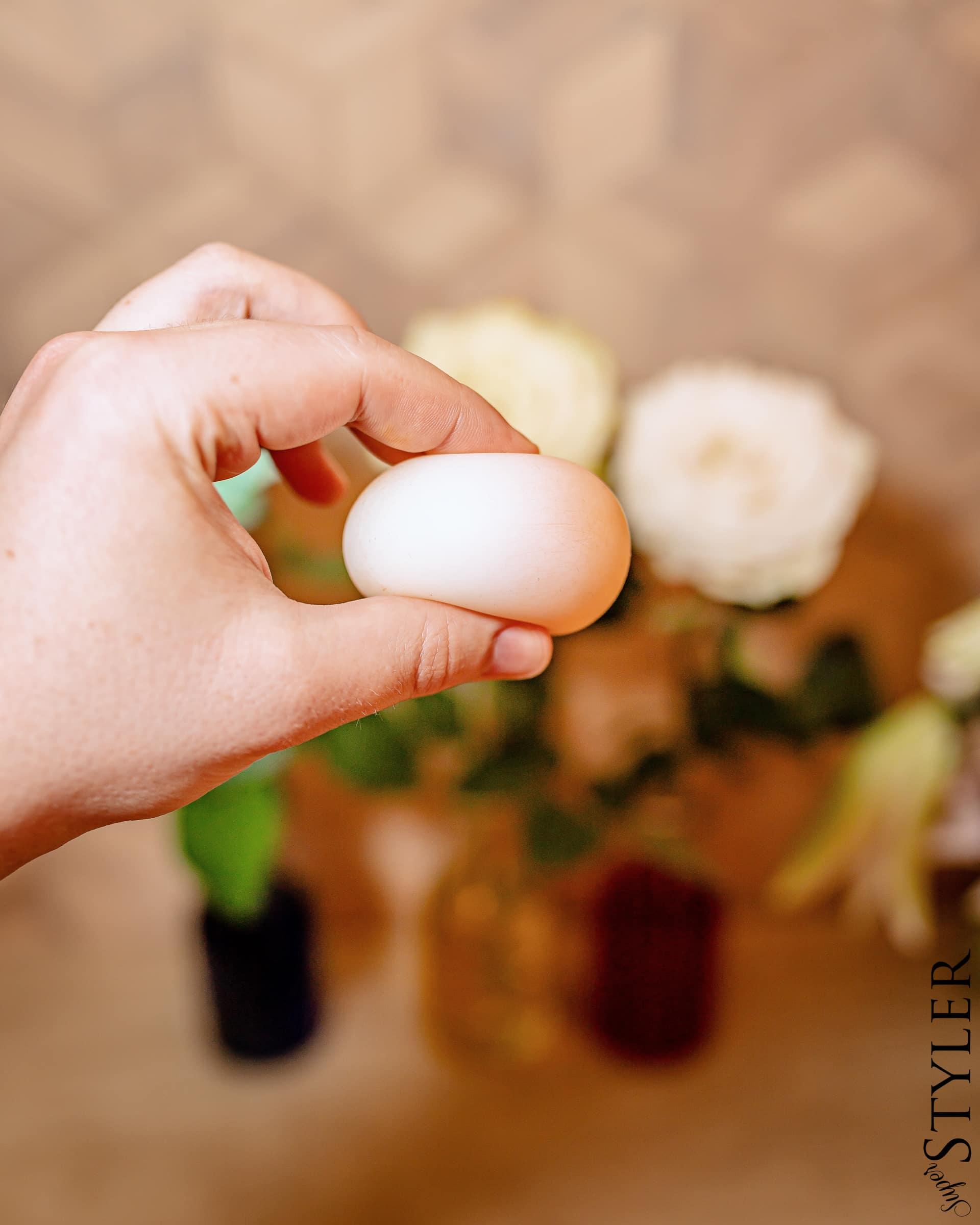 jajo w occie