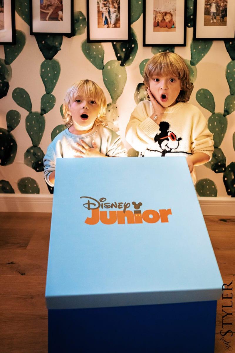 Disney Junior Box Miecio Zyzio